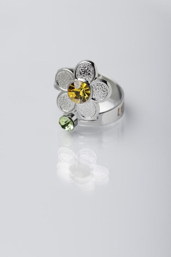 Floarea hortensie